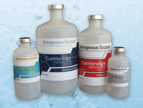 Cambridge Technologies Vaccines