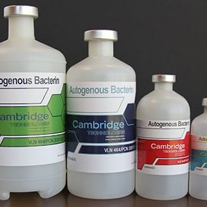 cambridge vaccine bottles
